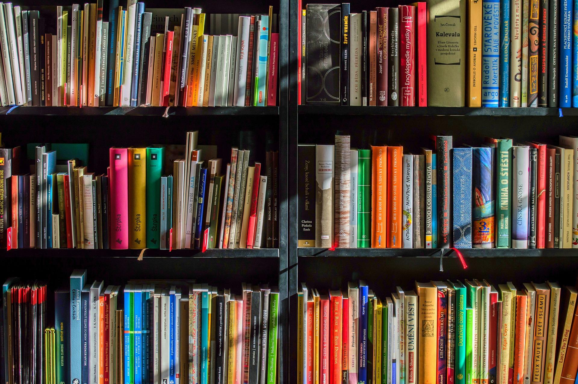 Colourful books on shelves.